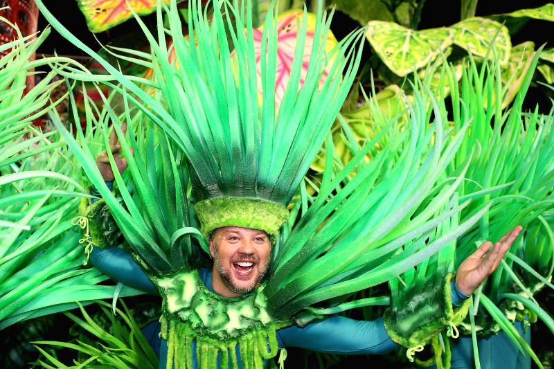 "A reveller from ""Beija-Flor"" samba school participates in the carnival samba parade at the Sambadrome in Rio de Janiero, Brazil, Feb. 17, 2015. ..."
