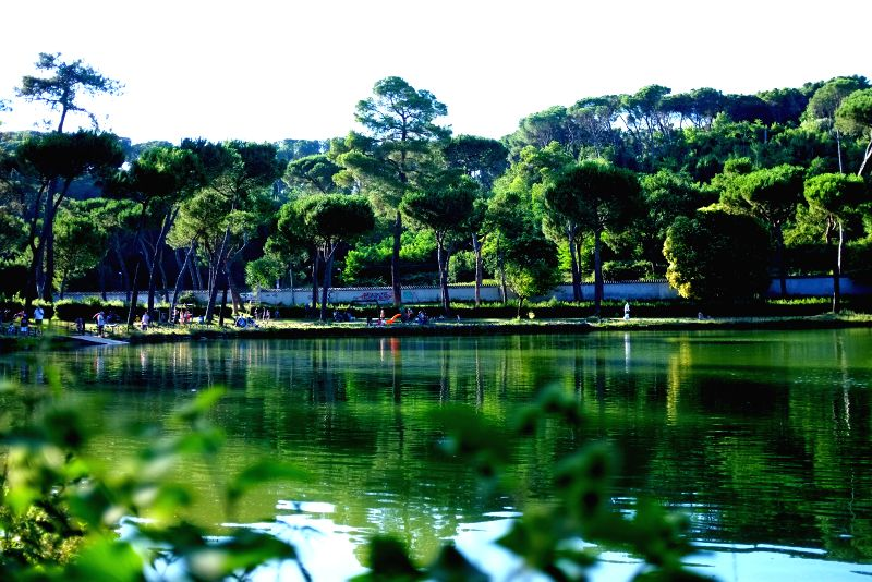 People enjoy themselves in Villa Ada park in Rome, Italy, on July 6, 2014.