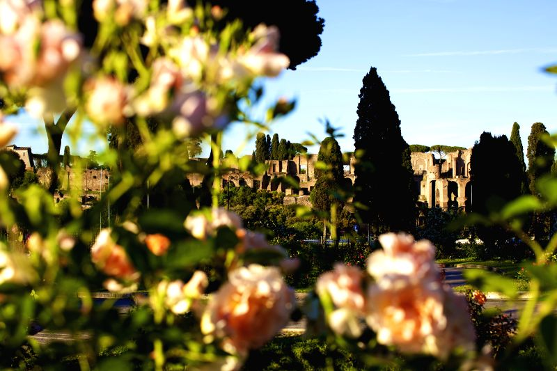 ROME, May 4, 2017 - The Palatine Hill is seen from the Rome Rose Garden in Rome, Italy, on May 2, 2017. Rome Rose Garden is located at the foot of Aventine Hill, hosting about 1,100 varieties of ...