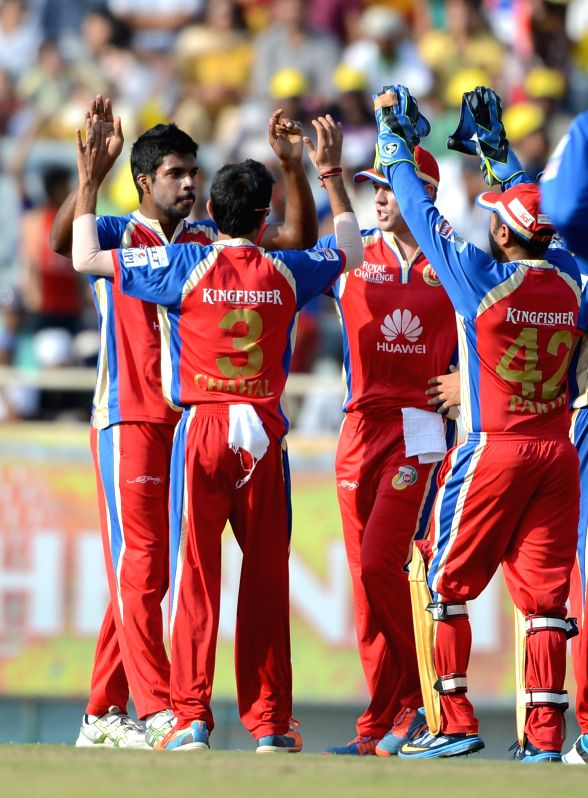 Royal Challengers Bangalore  players celebrate fall of a wicket during 42nd match of IPL 2014 between Chennai Super Kings and Royal Challengers Bangalore , played at JSCA International Stadium ...