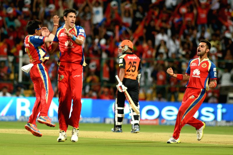Royal Challengers Bangalore players celebrate AJ Finch's wicket during the 24th match of IPL 2014 between Sunrisers Hyderabad and Royal Challengers Bangalore at M Chinnaswamy Stadium in Bangalore on .