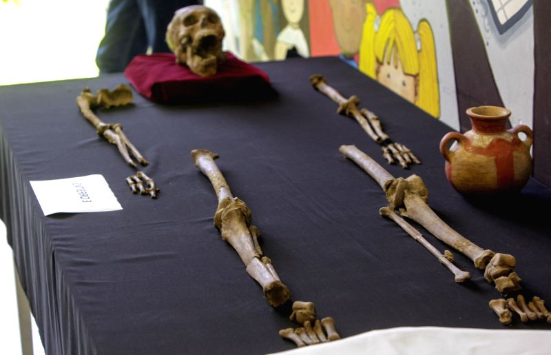 One of the three human skeletons of more than 1,600 years old is exhibited in the National Museum of Antropology, in the city of San Salvador, capital of El ...