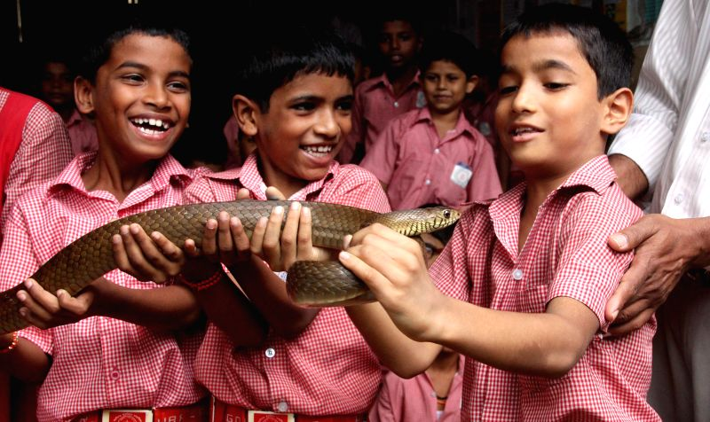 School students hold a snake during a snake awareness programme run by Forest department officials on Nag Panchami in Panaji on August 1, 2014.
