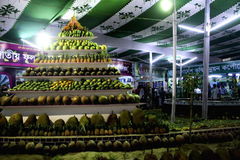 Seasonal fruits are on display at a three-day fruit festival organised by Department of Agricultural Extension at Farmgate in Dhaka, Bangladesh on June 17, 2014.