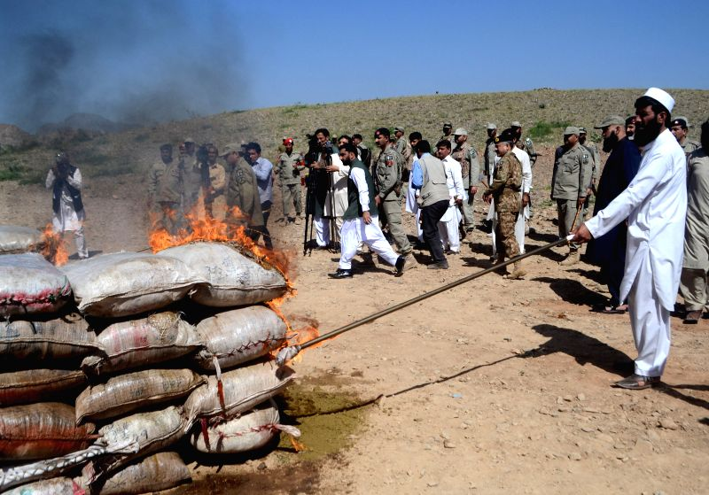 A Pakistani official burns drugs during a destruction action in northwest Pakistan's Shahkas, on April 23, 2015. Pakistani officials burned on Thursday tons of ...