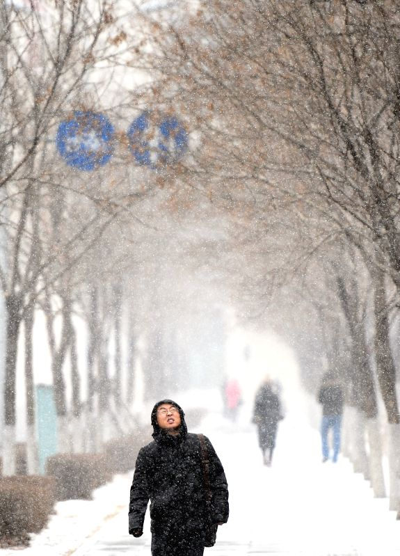 A man walks in snow in Shenyang, capital of northeast China's Liaoning Province, Jan. 5, 2015. The city's meteorological station issued a blue alert for cold wave ..