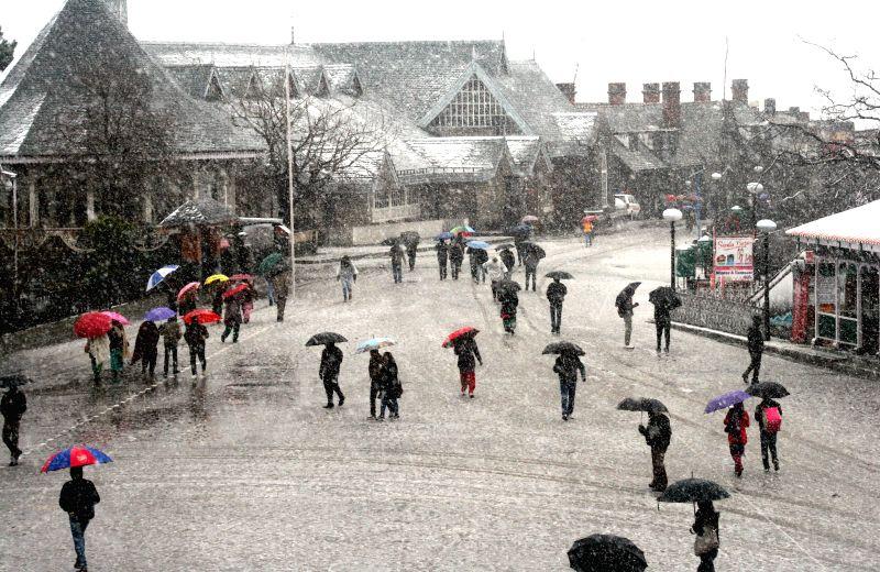 People enjoy snowfall at Ridge in Shimla, on March 2, 2015.