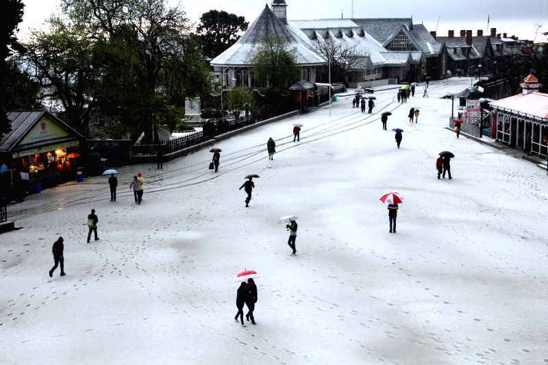 People walk with umbrellas during snowfalls in Shimla, on March 30, 2015.
