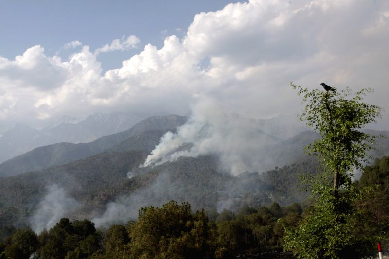 Smoke billows out of a forest near Palampur of Himachal Pradesh after a fire broke out on May 16, 2016.
