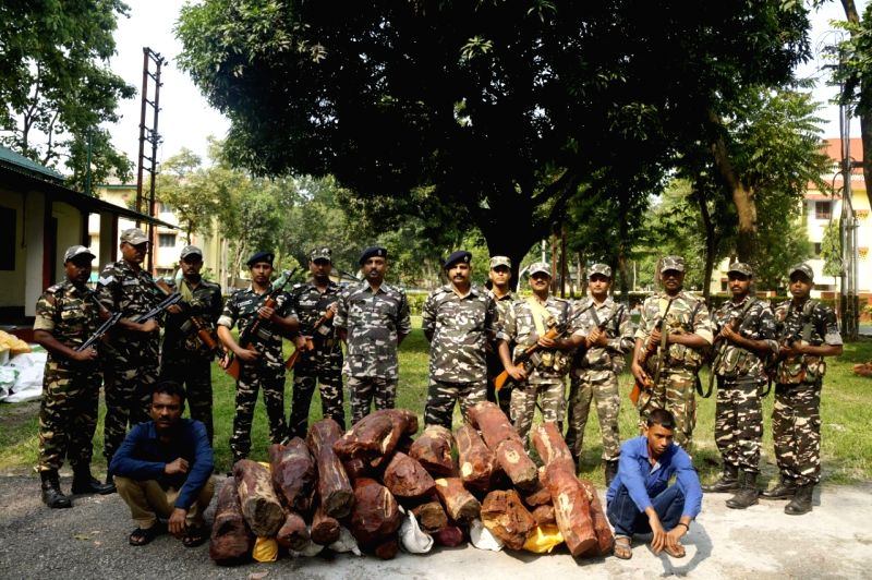 Soldiers of Sashastra Seema Bal (SSB) present before press the sandalwood seized from a house in Jitupara village of West Bengal on June 3, 2016.