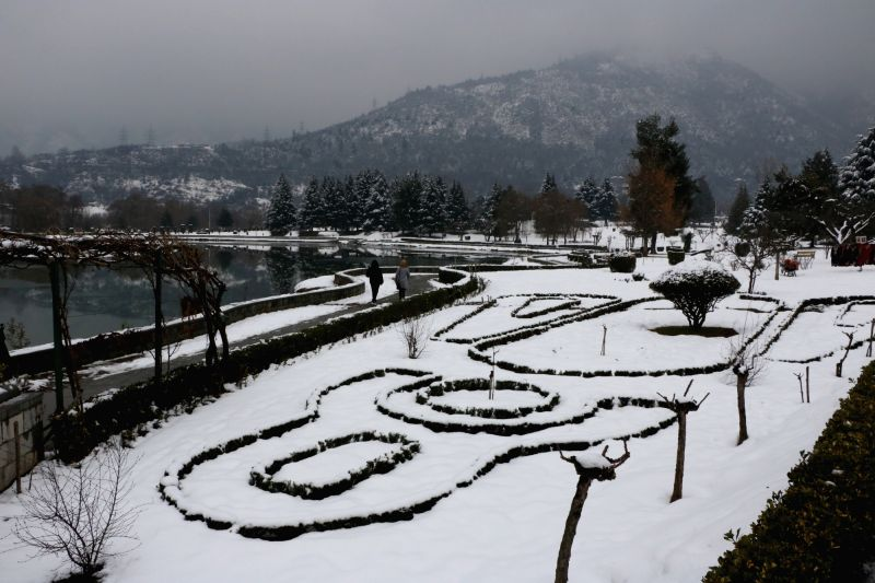 Srinagar: A view of snow covered Botanical Garden in Srinagar on Jan 23, 2019. (Photo: IANS)