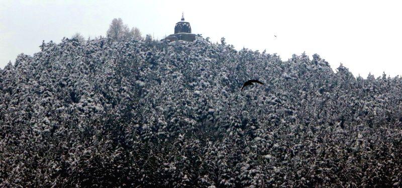 Srinagar: A view of the snow-covered Shankaracharya temple after fresh snowfall in Srinagar, on Jan 12, 2019. (Photo: IANS)