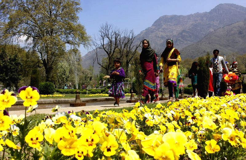 Visitors at Srinagar's Nishat Bagh, that was opened for general public on April 14, 2015.