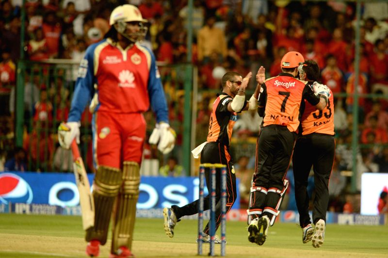 Sunrisers Hyderabad players celebrate fall of a wicket during the 24th match of IPL 2014 between Sunrisers Hyderabad and Royal Challengers Bangalore at M Chinnaswamy Stadium in Bangalore on May 4, ...