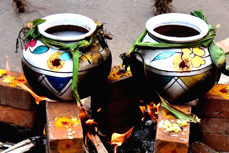Sweet pongal being cooked