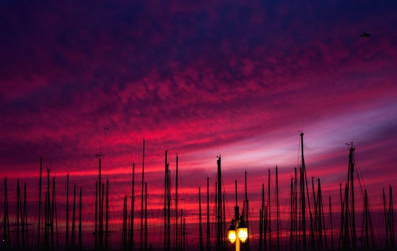 Masts of yachts are silhouetted against sunset on the shore of the Mediterranean Sea in Tel Aviv, Israel, on April 16, 2014. Photo: