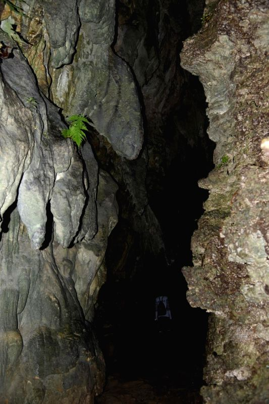 The limestone caves of Baratang island in the Andaman and Nicobar archipelago. The caves are said to have risen from underwater after an earthquake. Baratang island is situated some 100 km north of ...