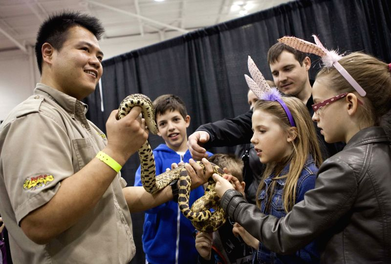 Visitors touch a snake during the 2014 All About Pets Show in Toronto, Canada, April 18, 2014. Featuring everything from cats and dogs, to horses, fish, and even ..