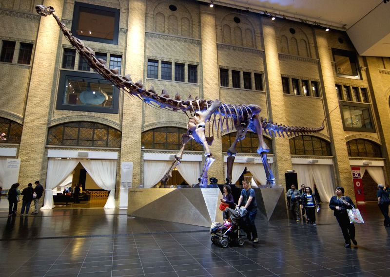 A family visit the Royal Ontario Museum, in Toronto, Canada, on May 15, 2014. The International Day of Families is observed on May 15 every year. The Day was ...