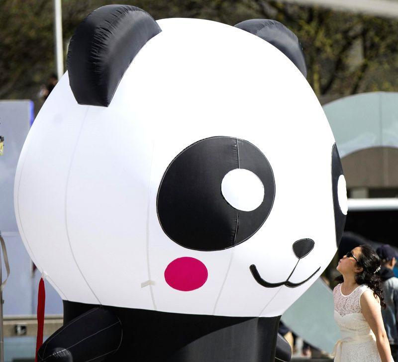 TORONTO, May 20, 2017 - A visitor poses for photos with an inflatable panda ballon during the 2017 China Culture and Tourism Festival at Nathan Phillips Square in Toronto, Canada, May 19, 2017. ...