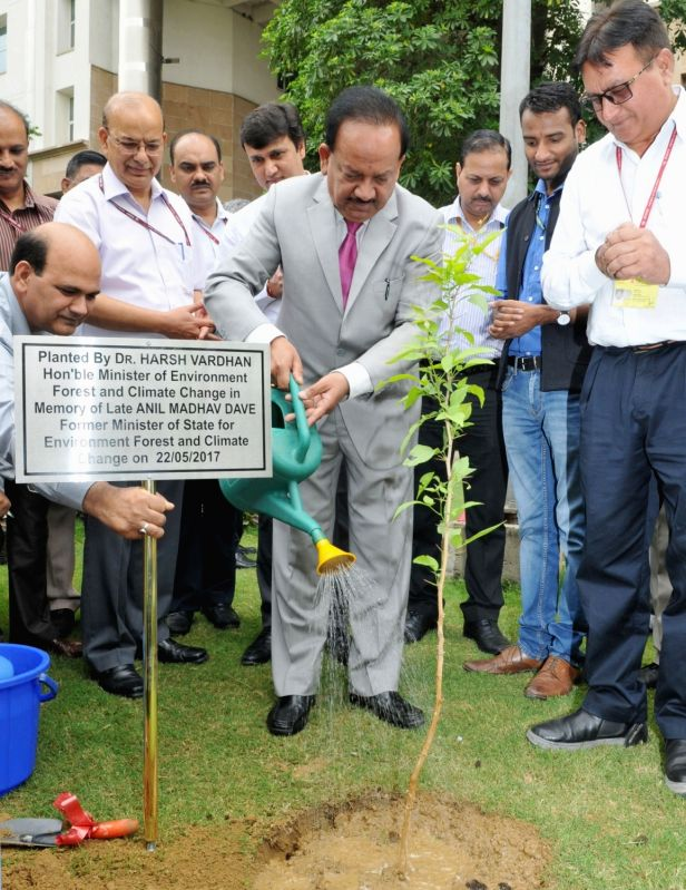 Union Minister Environment Minister Dr. Harsh Vardhan plants a sapling in the memory of the former Environment Minister late Anil Madhav Dave in the premises of IP Bhavan, in New Delhi on ... - Environment Minister D