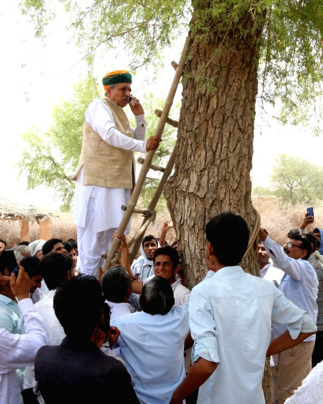 Union MoS Finance Arjun Ram Meghwal climbs a ladder resting along a tree to get better mobile signal during on World Environment Day in Bikaner, on June 5, 2017.