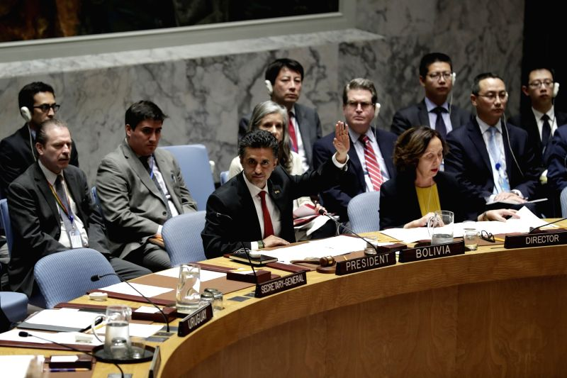 UNITED NATIONS, June 2, 2017 - Bolivia's ambassador to the UN Sacha Llorenti (L, Front) votes in favor of a UN Security Council's resolution on the Democratic People's Republic of Korea (DPRK) at the ...