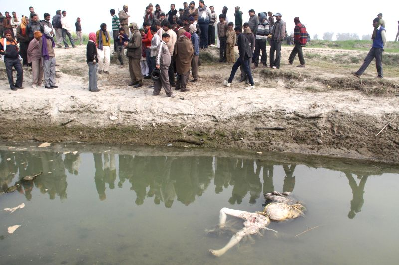 A human body floats in a channel of the Ganga river in Unnao district of Uttar Pradesh on Jan 14, 2015. Thirty bodies were recovered from the river's channel till late Tuesday (13th Jan 2015) .