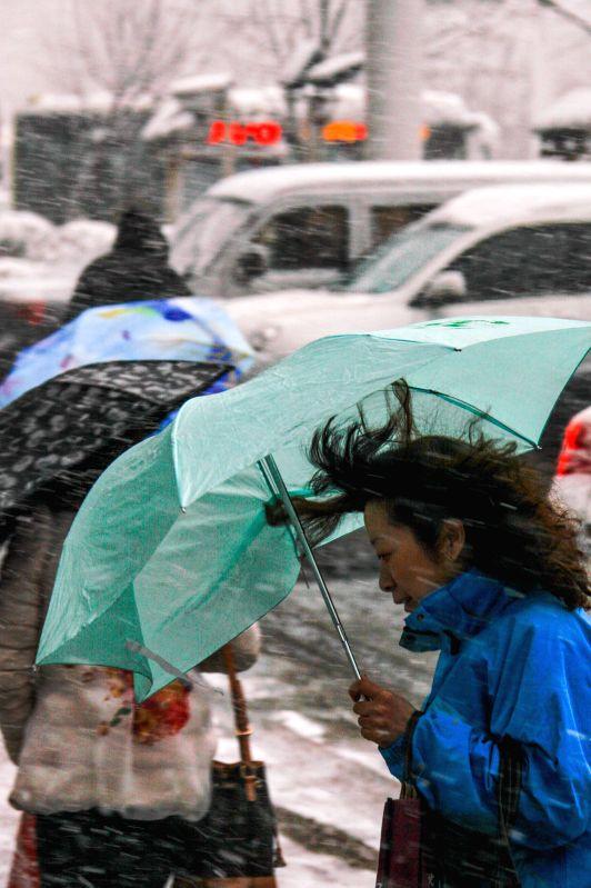 A pedestrian walk amid snowfall in Urumqi, capital of northwest China's Xinjiang Uygur Autonomous Region, April 23, 2014. A snowfall hit the city on April 23 and ...