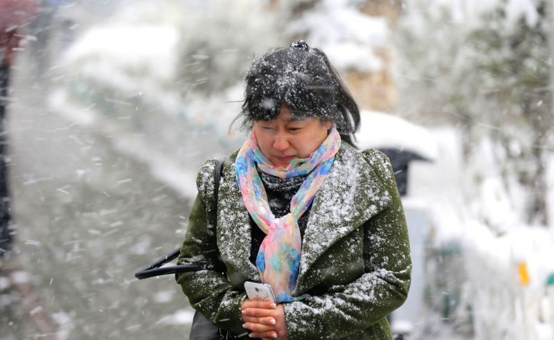 A pedestrian walks in snow in Urumqi, capital of northwest China's Xinjiang Uygur Autonomous Region, April 23, 2014. A snowfall hit the city on Wednesday and the ...