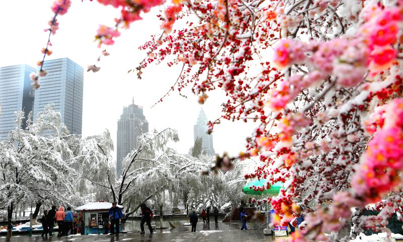 Photo taken on April 23, 2014 shows the scenery after snow in Urumqi, capital of northwest China's Xinjiang Uygur Autonomous Region. A snowfall hit the city on ...