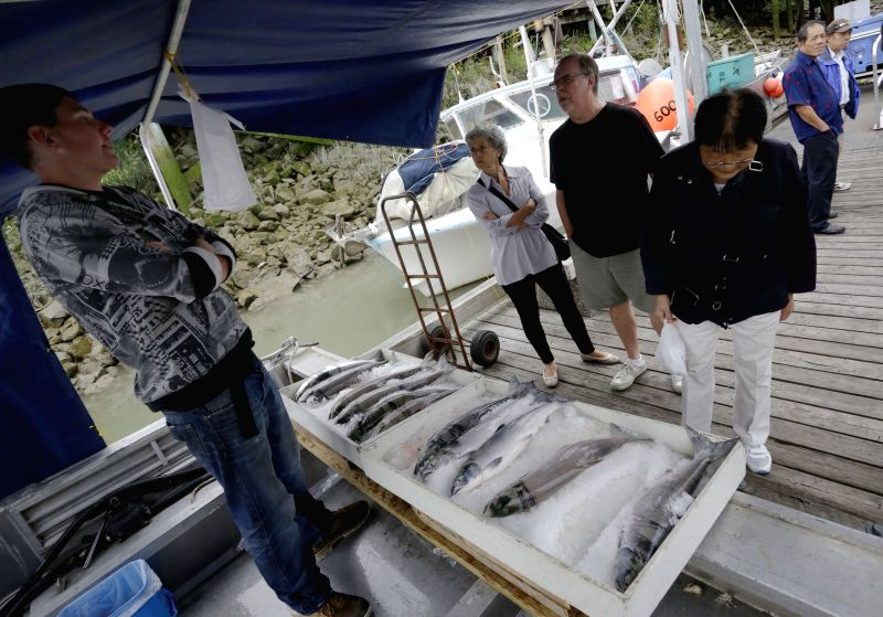 Residents shop for the sockeye at the dock of Steveston Village in Richmond, Canada, Aug. 12, 2014. At the first week of the official opening to commercial ...