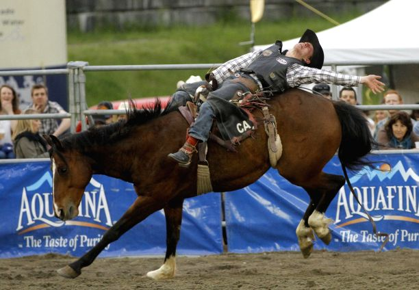 VANCOUVER (CANADA), May 17, 2014 A cowboy competes in bare back ride contest during the Cloverdale Rodeo event in Surrey Vancouver, Canada, May 16, 2014. The 68th annual Cloverdale Rodeo .