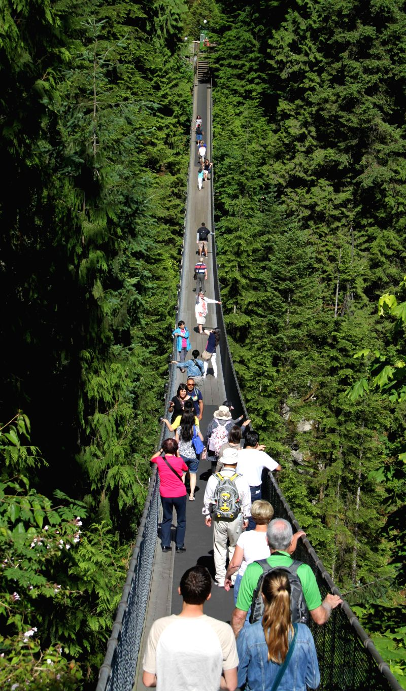 The Capilano suspension bridge is seen in Vancouver, Canada, June 26, 2014. The 135 meters long suspension bridge celebrates its 125th anniversary this summer. As