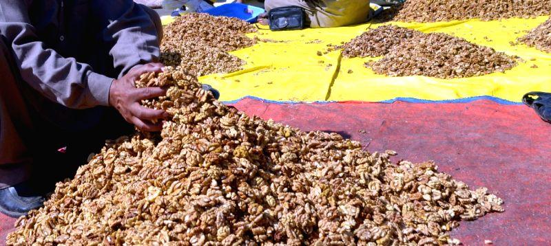 Walnuts. (File Photo: IANS)