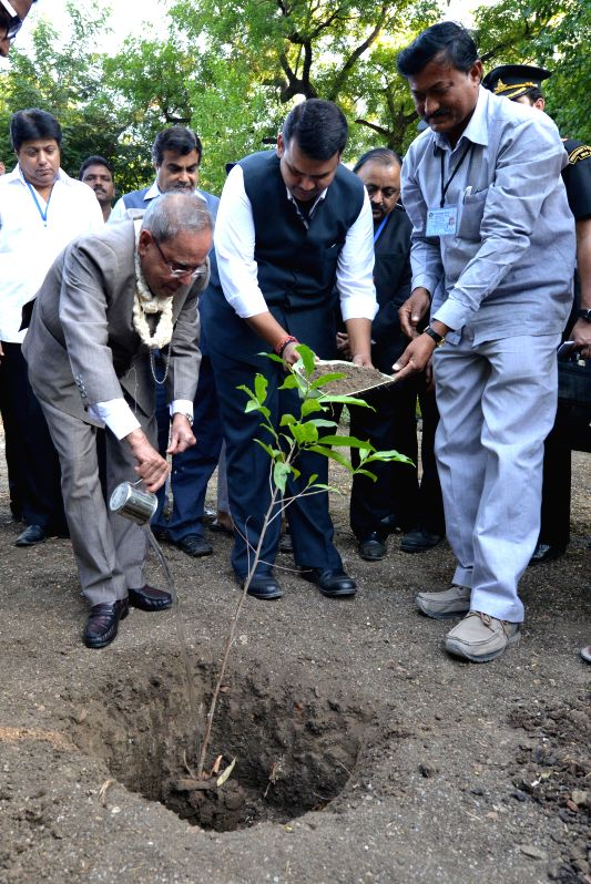 President Pranab Mukherjee and Maharashtra Chief Minister Devendra Fadnavis plant a saplingat the Sewagram Ashram in Wardha, Maharashtra on Nov 26, 2014. - Devendra Fadnavis