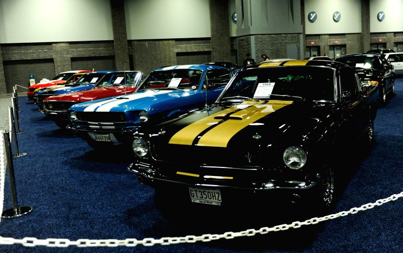 Mustang presented by National Capital Region Mustang Club are showed during the second press day of 2015 Washington Auto Show in Washington D.C., capital of