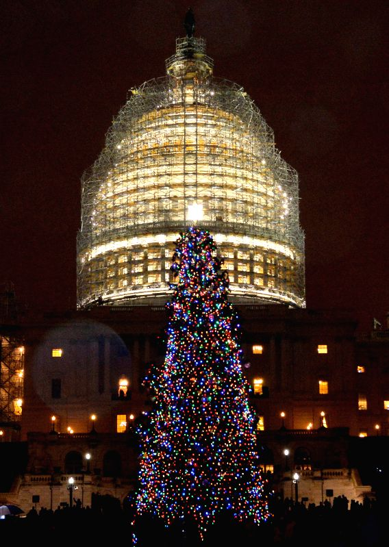 Washington D.C: The Capitol Christmas Tree is lit in front of the Capitol Hill in Washington D.C., capital of the United States, Dec. 2, 2014. The 2014 Capitol Christmas Tree is a white spruce from ..
