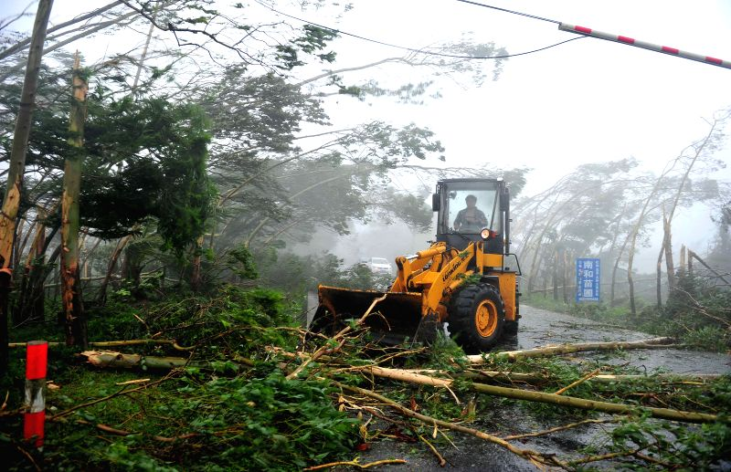 A municipal worker drives a bulldozer to clear broken trees off the road in Wenchang, south China's island of Hainan Province, July 18, 2014. A man was killed when