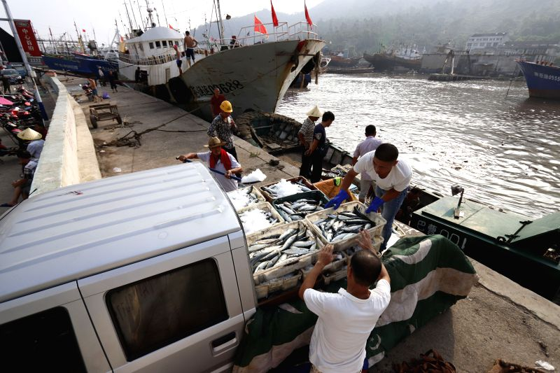 WENZHOU, Aug. 12, 2018 - Fishermen load fish at a harbor in Cangnan County of Wenzhou City, east China's Zhejiang Province, Aug. 12, 2018. China's national observatory on Sunday issued a blue alert ...