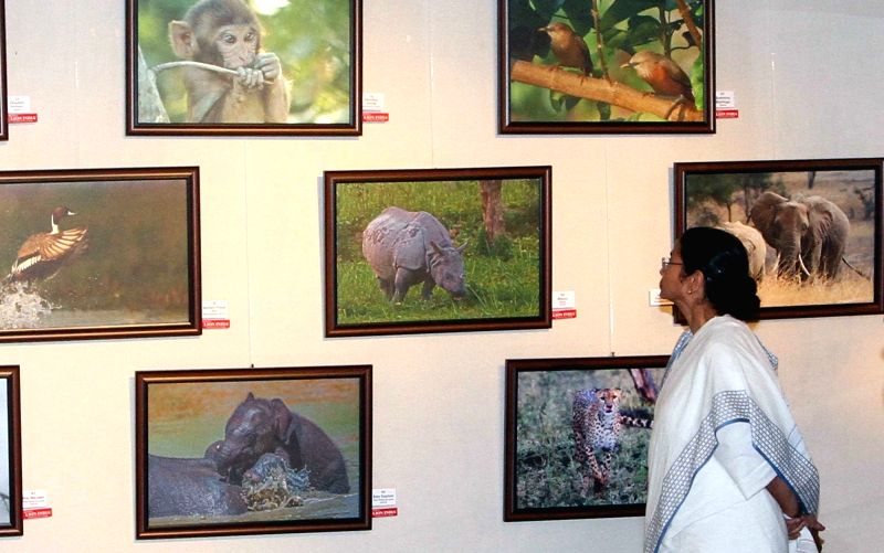 West Bengal Chief Minister Mamata Banerjee during inauguration of actor Sabyasachi Chakrabarty's photo exhibition in Kolkata, on Nov 27, 2015.