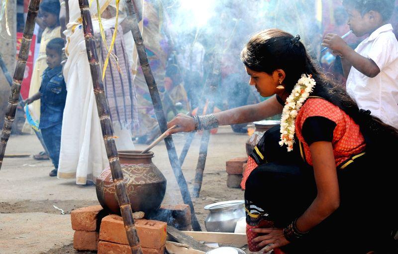 Women Pongal