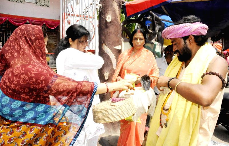 Women give drop money in snake charmer's basket on Naga Panchami in Patna on August 1, 2014.