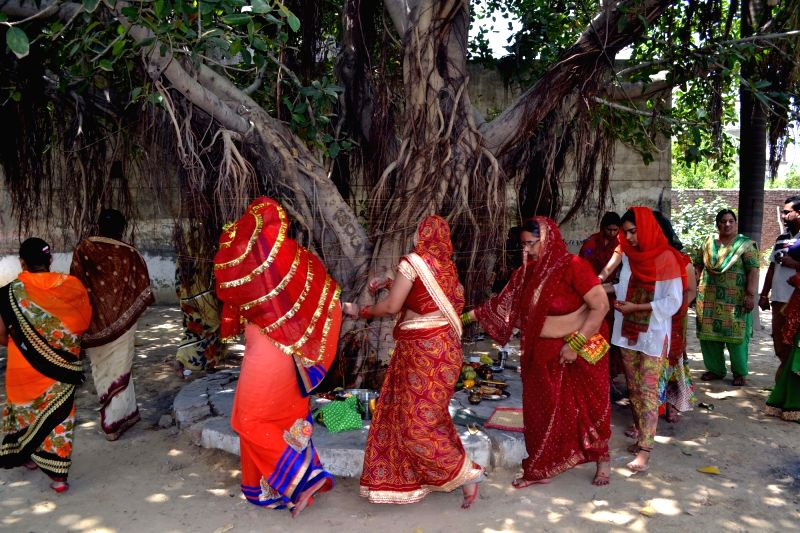 Women worship a banyan tree on Vat Purnima in Agra on May 25, 2017.