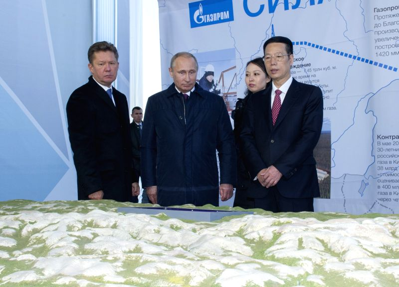 Chinese Vice Premier Zhang Gaoli (R, front) and Russian President Vladimir Putin (C, front) look at a sand table of the Russian part of the China-Russia East Route .