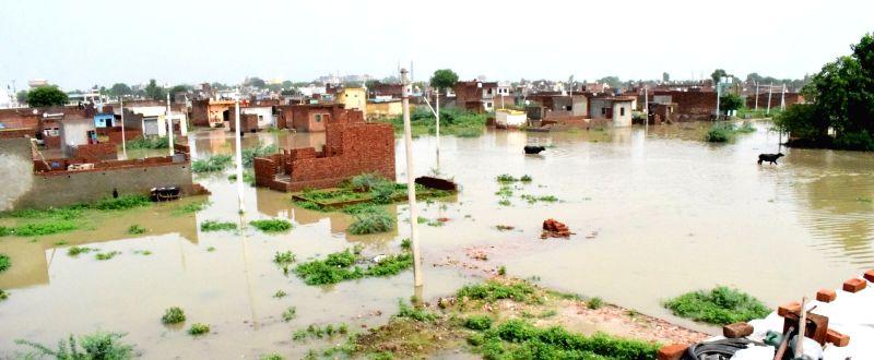 Yamuna waters inundate Jai Singh Pura of Mathura, on Aug 1, 2018. - Jai Singh Pura