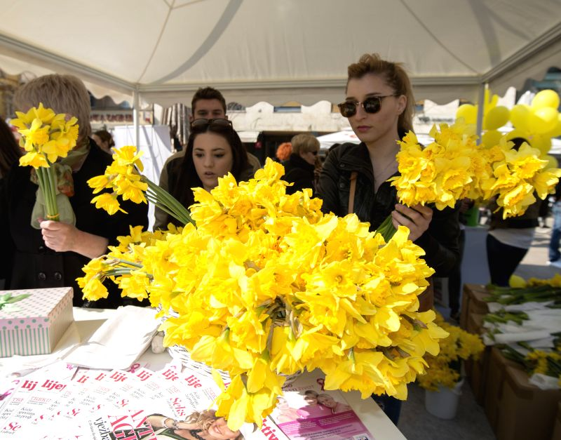 Volunteers sell daffodil flowers during the annual Daffodil Day event in Zagreb, capital of Croatia, on March 21, 2015. The charity event was organised by the ...