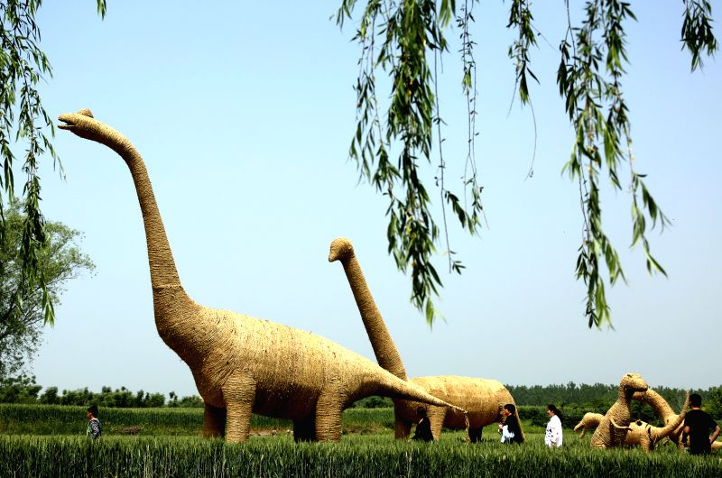 ZAOZHUANG, May 7, 2017 - Tourists visit straw-made dinosaurs during a straw art gala held in Zaozhuang city, east China's Shandong Province, May 7, 2017.