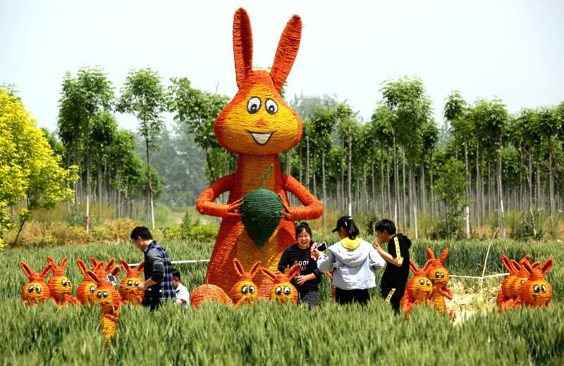 ZAOZHUANG, May 7, 2017 - Tourists visit straw-made rabbits during a straw art gala held in Zaozhuang city, east China's Shandong Province, May 7, 2017.