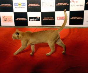 Dadasaheb Phalke Awards - Cat